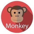 IQB_monkey_2.jpg