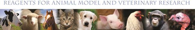 Kingfisher Biotech(キングフィッシャー)社 獣医学・モデル動物研究製品
