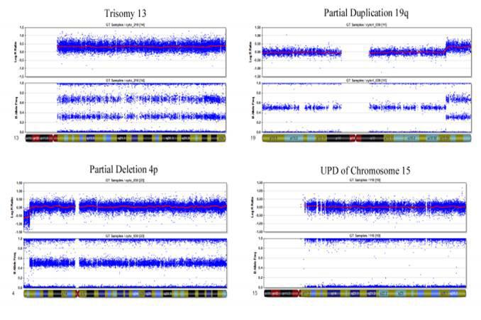 MAG_Microarray_SNP_Genotyping_2.jpg