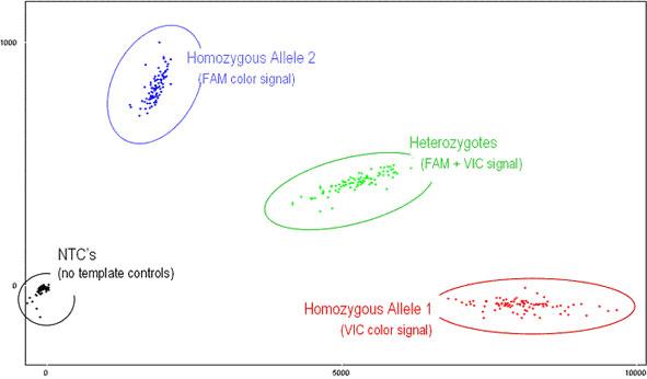 MAG_Microarray_Taqman_1.jpg