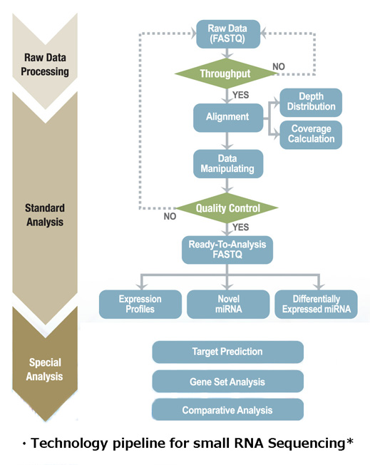 Technology pipeline for small RNA Sequencing
