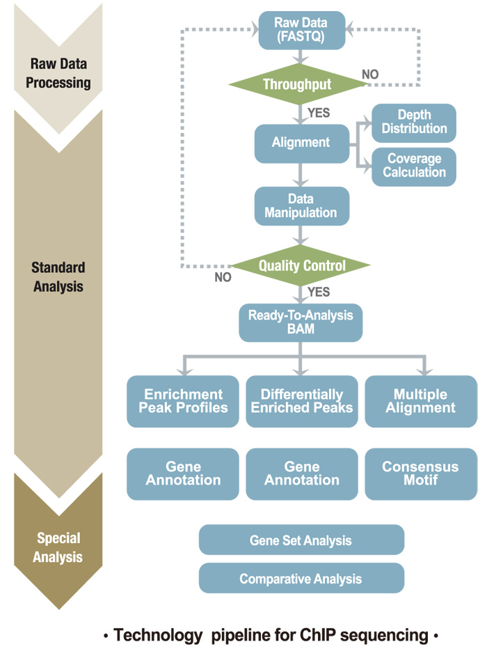 technology pipeline for ChIP sequencing