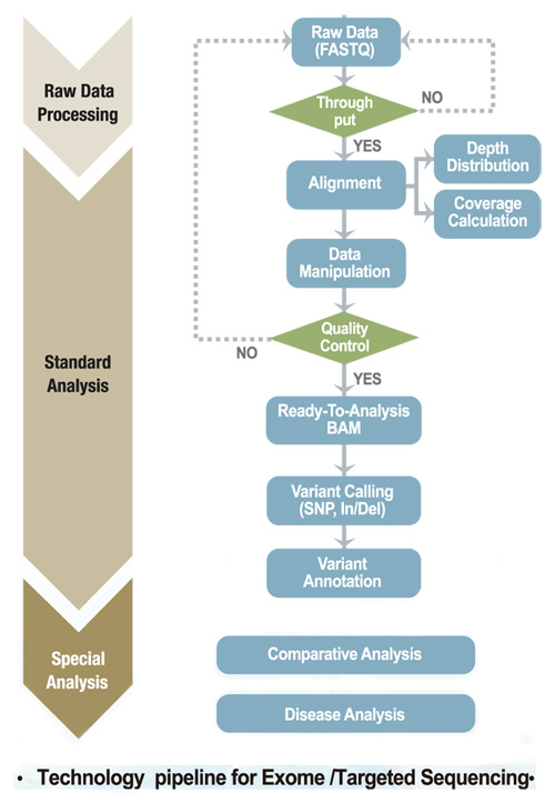 Technology pipeline for Exome/Targeted Sequencing