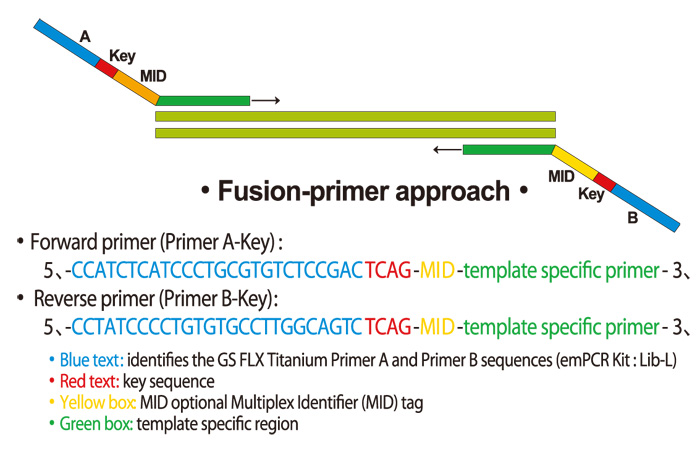 Fusion-primer approach