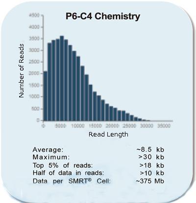 P6-C4 Chemistry