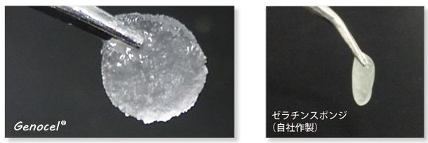 NIK社ゼラチン繊維基材Genocel™
