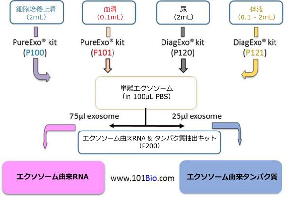 101 Bio社 エクソソーム単離/分離キット