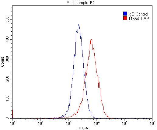 1X10^6 MCF-7 cells were stained with 0.2ug Cyclin E antibody (11554-1-AP, red) and control antibody (blue). Fixed with 4% PFA blocked with 3% BSA (30 min). Alexa Fluor 488-congugated AffiniPure Goat Anti-Rabbit IgG(H+L) with dilution 1:1500.