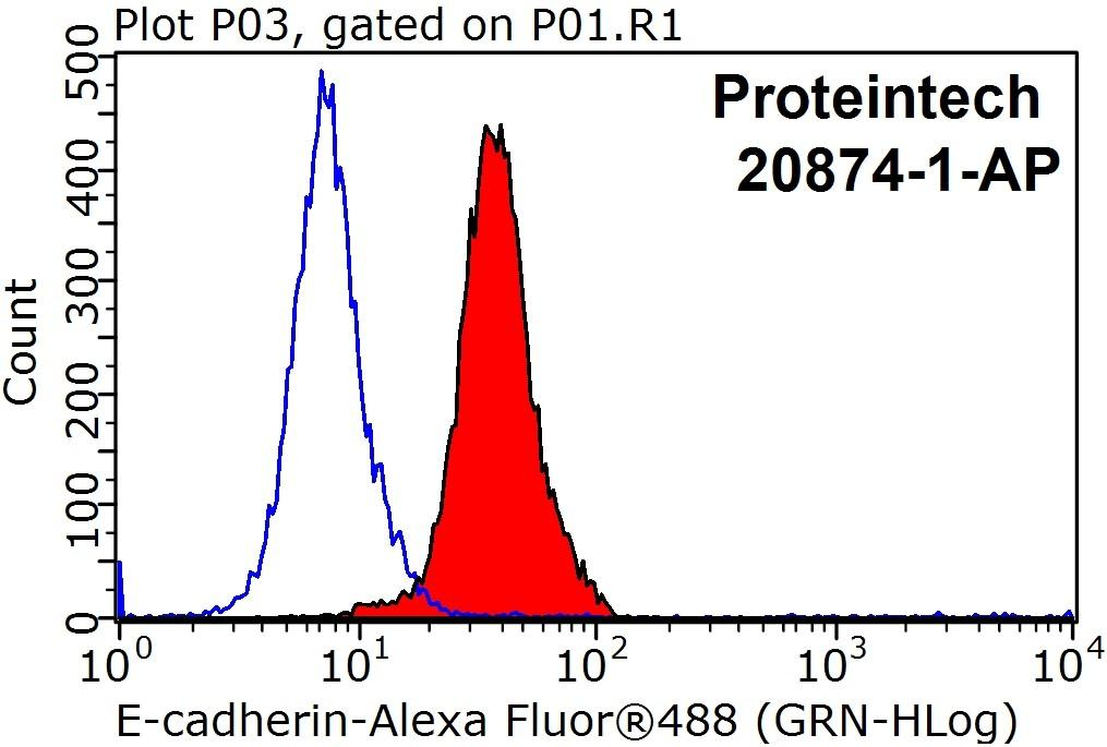 1X10^6 HepG2 cells were stained with .2ug E-cadherin antibody (20874-1-AP, red) and control antibody (blue). Fixed with 90% MeOH blocked with 3% BSA (30 min). Alexa Fluor 488-congugated AffiniPure Goat Anti-Rabbit IgG(H+L) with dilution 1:1000.