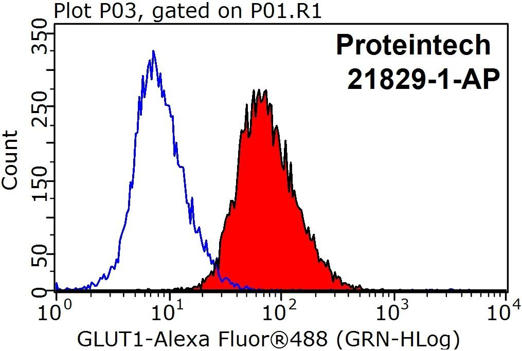1X10^6 HeLa cells were stained with 0.2ug SLC2A1,GLUT1 antibody (21829-1-AP, red) and control antibody (blue). Fixed with 90% MeOH blocked with 3% BSA (30 min). Alexa Fluor 488-congugated AffiniPure Goat Anti-Rabbit IgG(H+L) with dilution 1:1000.