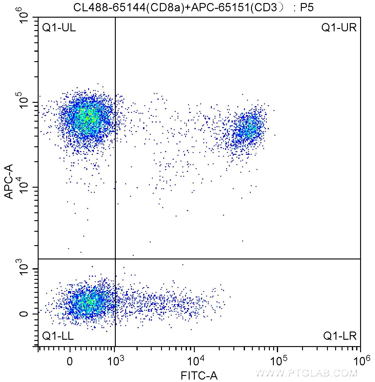 100 ul human peripheral blood were surface stained with APC Anti-Human CD3 (APC-65151, Clone: UCHT1) and 5.00 ul CoraLite®488-conjugated Anti-Human CD8a (CL488-65144, Clone: RPA-T8). Lymphocytes were gated for analysis. Cells were not fixed.