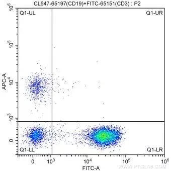 1X10^6 human peripheral blood lymphocytes were surface stained with FITC-Anti-Human CD3 (FITC-65151,?Clone: UCHT1) and 5 ul CoraLite®647-conjugated Anti-Human CD19 (CL647-65197, Clone: 4G7). Cells were not fixed.