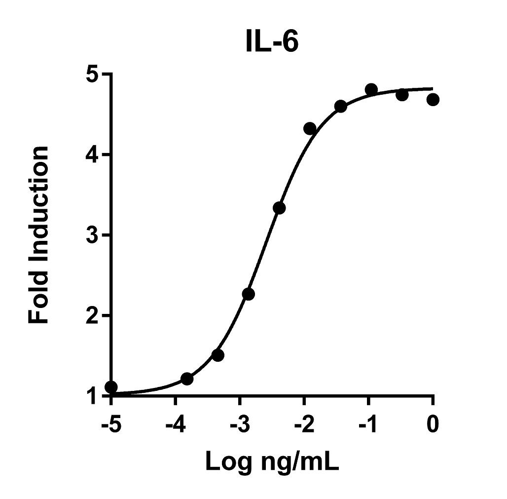 The activity was determined by the dose-dependent stimulation of the proliferation of 7TD1 cells (mouse hybridoma cell line) using CellTiter 96® AQueous One Solution Cell Proliferation Assay.