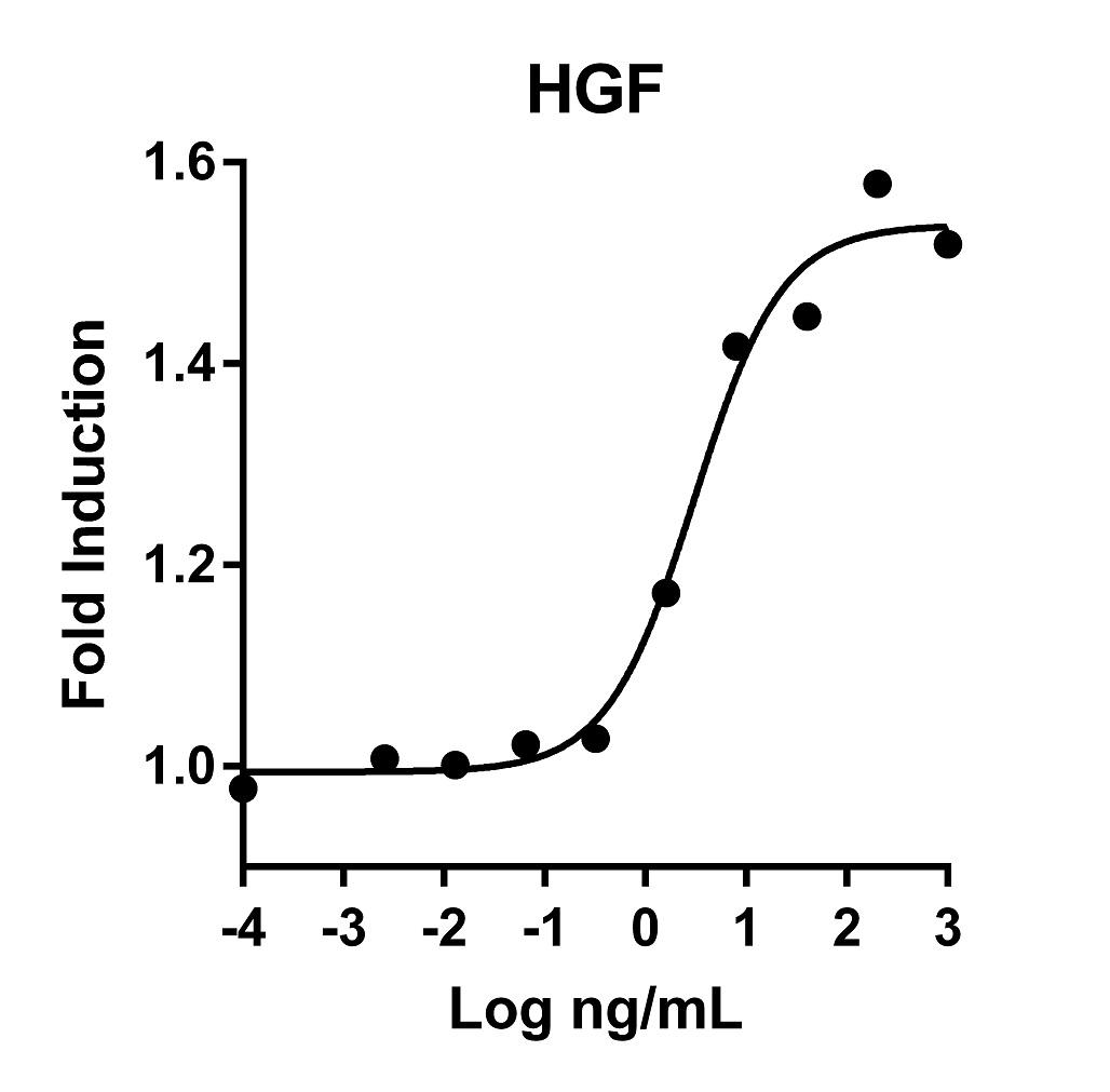 The activity was determined by the dose-dependent stimulation of the proliferation of the monkey epithelial cell line 4MBr-5 using Promega CellTiter96® Aqueous Non-Radioactive Cell Proliferation Assay.