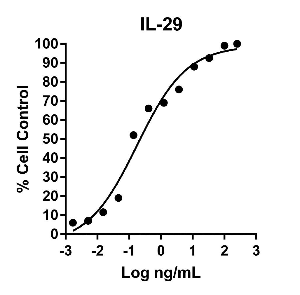 The activity was determined by the dose-dependent protection of the cytopathic effect on A549 cells (human lung adenocarcinoma epithelial cell line) that were challenged with encephalomyocarditis (EMC) virus using crystal violet staining as a read-out.