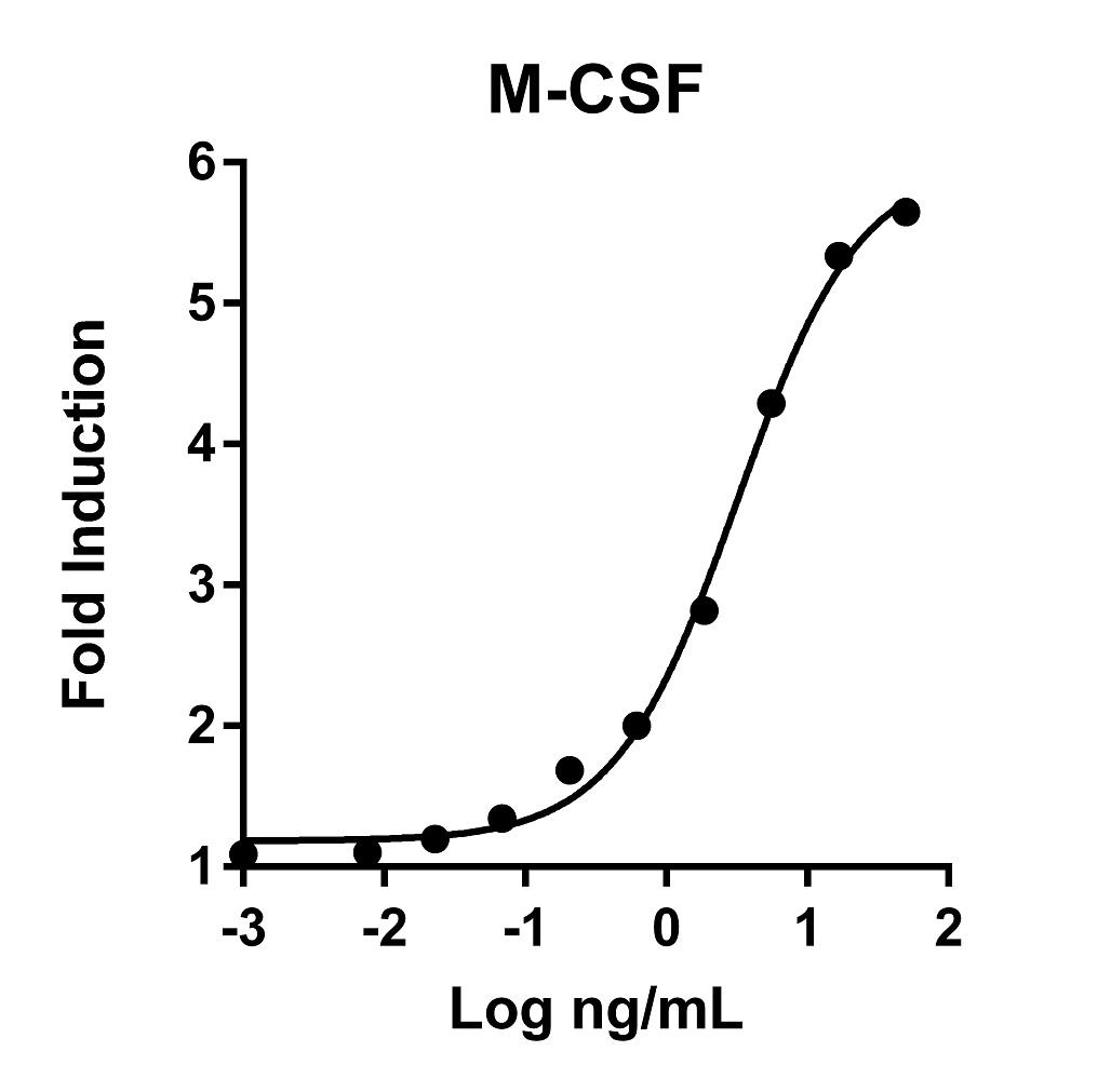 The activity was determined by the dose-dependent stimulation of the proliferation of murine M-NFS-60 cells (Mouse Myeloid Leukemia indicator cell line) using Promega CellTiter96® Aqueous Non-Radioactive Cell Proliferation Assay.