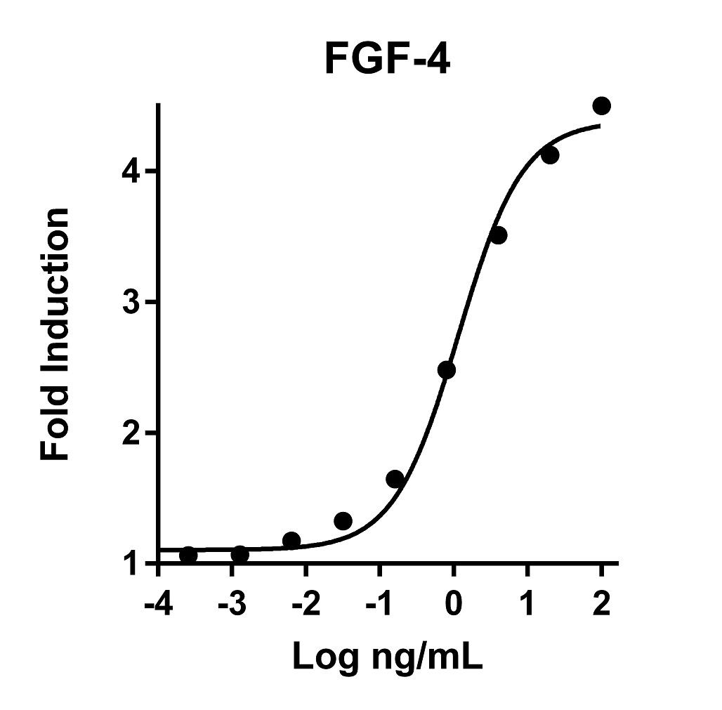 The activity was determined by the dose-dependent stimulation of the proliferation of the Balb/3T3 cell line using the Promega CellTiter96® Aqueous Non-Radioactive Cell Proliferation Assay.
