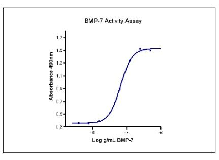 The activity was determined by the dose-dependent induction of alkaline phosphatase production in the ATDC-5 cell line (Mouse chondrogenic cell line) using pNPP as chromogenic substrate.