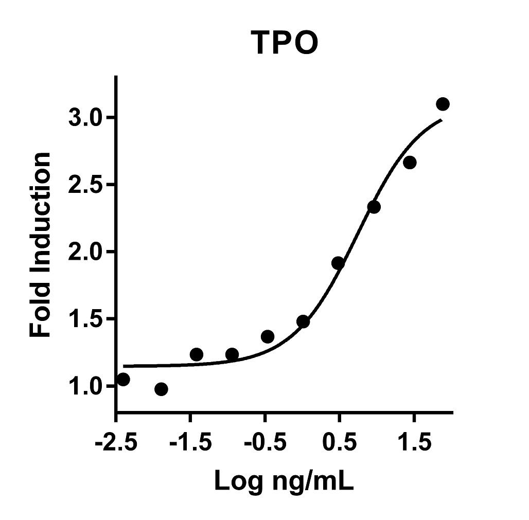 The activity was determined by the dose- dependent stimulation of the proliferation of MO7e cells using Promega CellTiter96® Aqueous Non-Radioactive Cell Proliferation Assay.