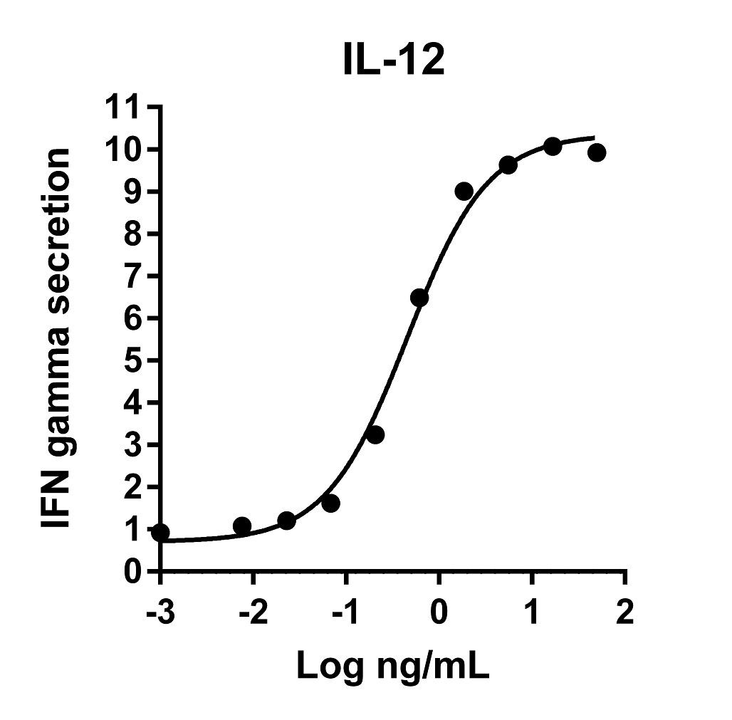 The activity was determined by the dose-dependent release of IFN-gamma from the human NK92 cell line in presence of 20 ng/mL rIL-2 using IFN-gamma ELISA kit.