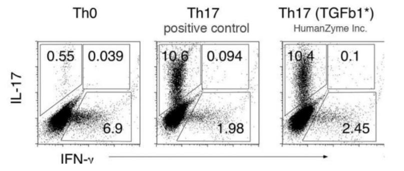 HumanKine® TGFβ1の生理活性