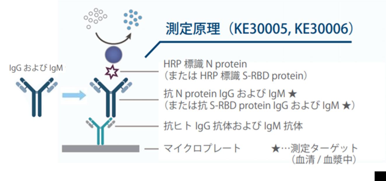 図3. IgG/IgMキャプチャーELISAキット(測定対象:総抗体(IgG抗体+IgM抗体))の測定原理