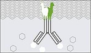 Nano-CaptureLigand