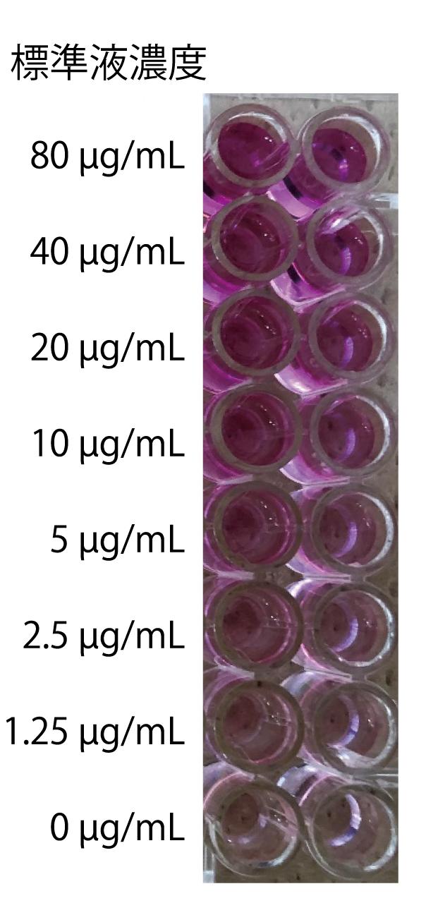 標準液の発色例