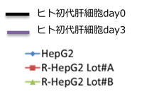 PMC_RHEPG2C_21.jpg