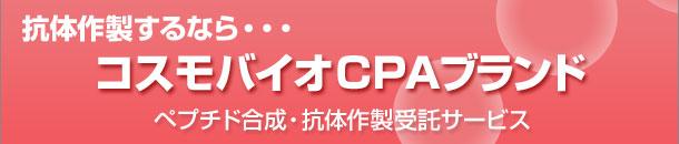 ペプチド合成・抗体作製受託サービス