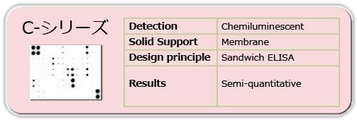 抗体アレイCシリーズ(発光検出、膜ベース)