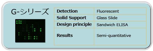 抗体アレイGシリーズ(蛍光検出、ガラススライド)