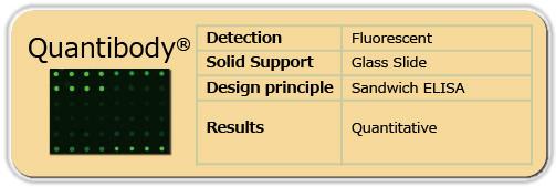 定量ELISAアレイ Quantibody(蛍光検出、ガラススライド)