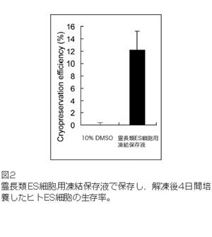 REC_00630001_D-10-150-10K_02_02.jpg