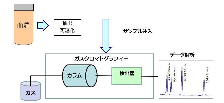 コレステロール合成・吸収マーカ...
