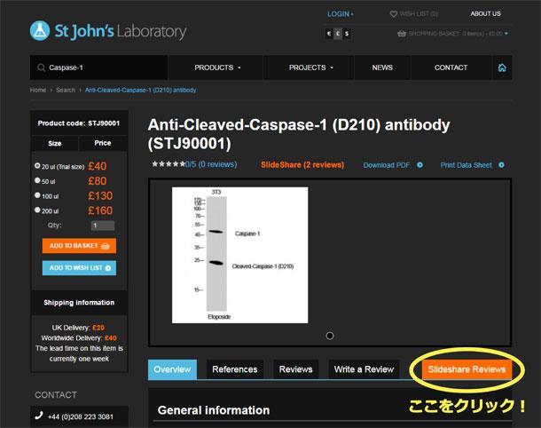 各抗体のデータ上で各種検証データをご覧いただけます。