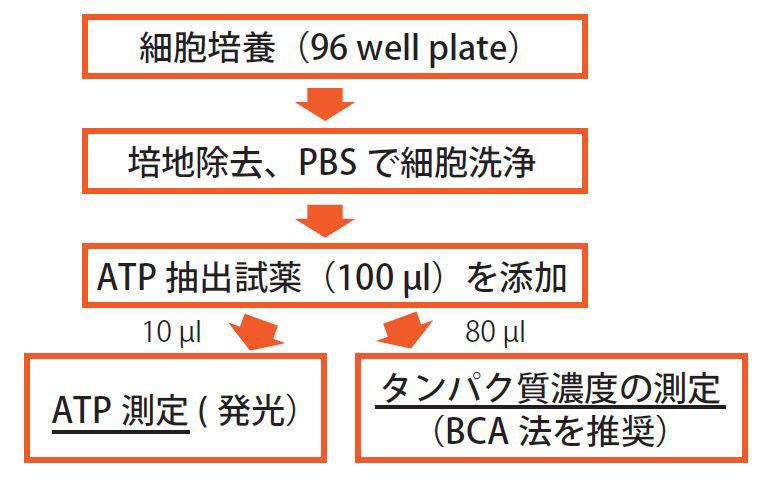 TIC_IC100_4.jpg