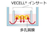 Preset VECELL® 模式図