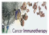 YSL_Cancer_Regulation_1.jpg