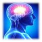 YSL_Neurological_Disease_1.jpg