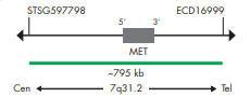 SPEC MET プローブのマップ