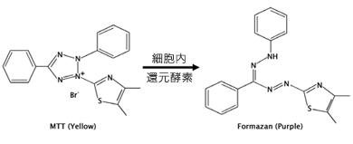 生細胞の還元反応 (レサズリン、MTT、XTT、アラマーブルー)
