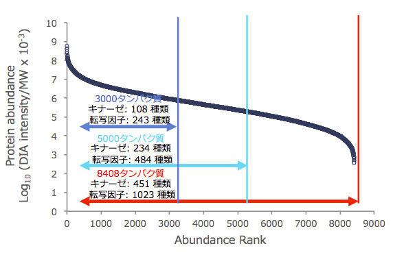 dia_proteome_analysis_2.jpg
