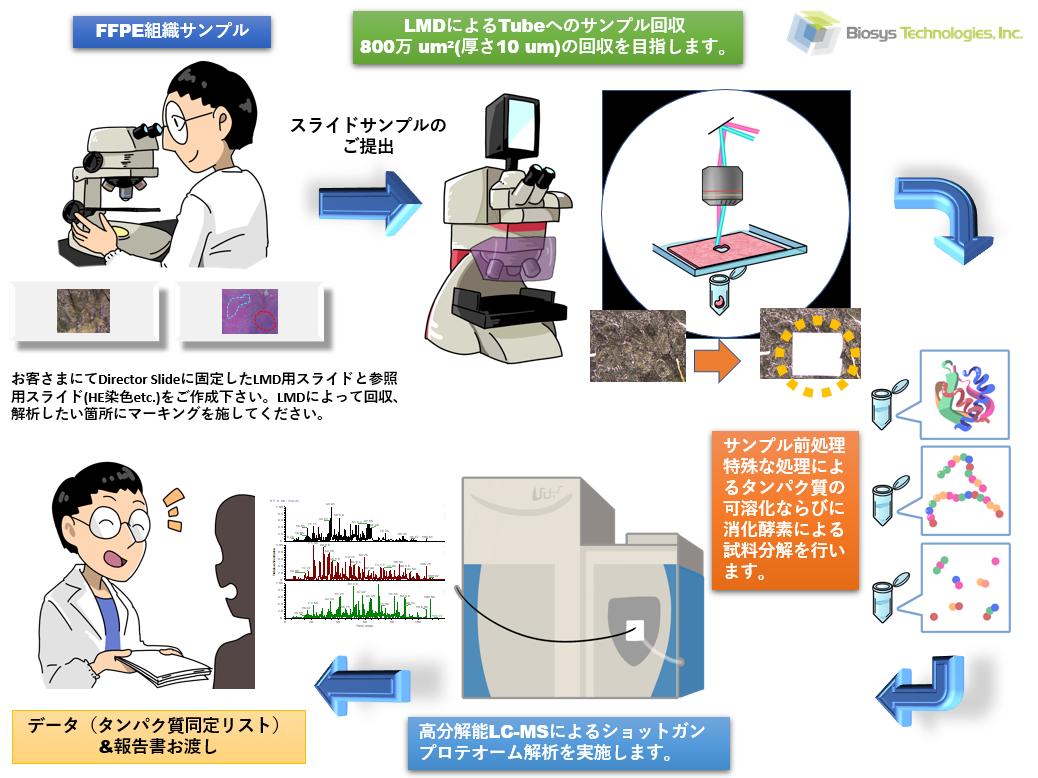FFPE組織サンプルの深層ショットガンプロテオーム解析