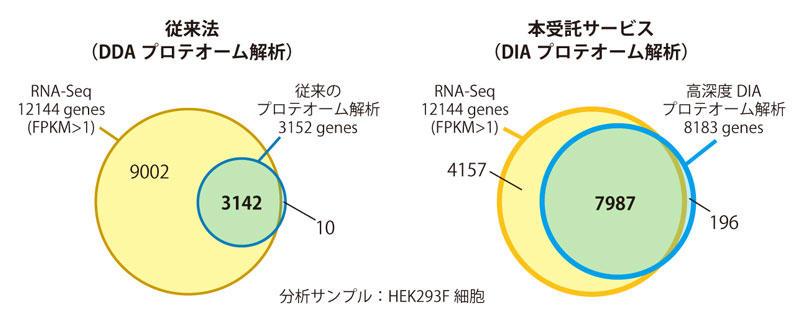 RNA-Seqとプロテオーム解析で観測されたmRNAとタンパク質をコードする 遺伝子の重複