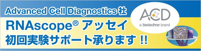 RNAscope(R)アッセイ 初回実験サポート承ります!!
