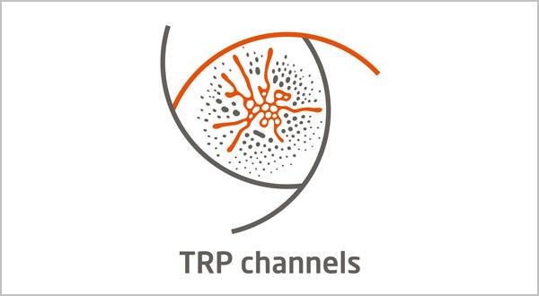 TRP Channels
