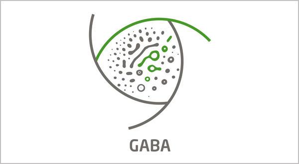 GABA-A receptors