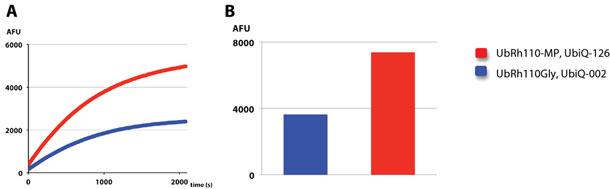 Ub-Rh110MP (#UbiQ-126)と従来のUb-Rh110Gly (#UbiQ-002)との性能比較