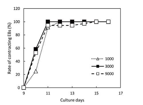 接着培養期間中に発生した拍動性心筋細胞の割合